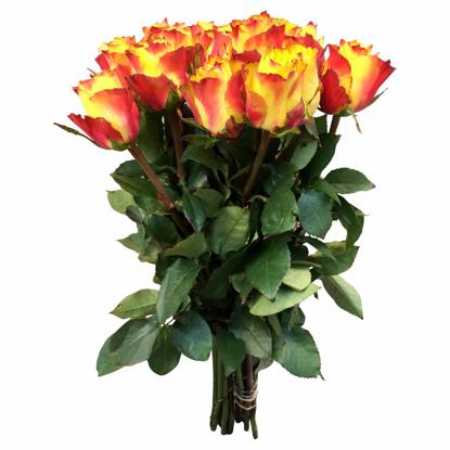 Slika Šopek vrtnic