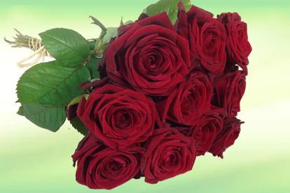 Slika Šopek vrtnic ljubezni