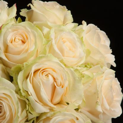 Slika Šopek vrtnic prijateljstva