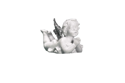 Slika ANGEL S SREBRNIMI KRILI