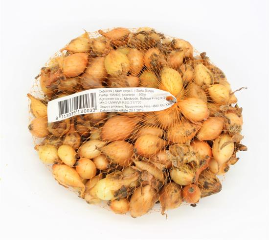 Čebulček (sturon)