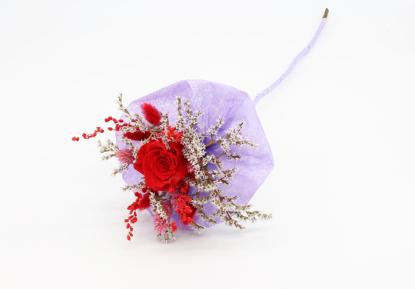 Slika Preparirana vrtnica